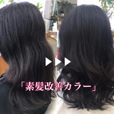 素髪改善カラー施術例
