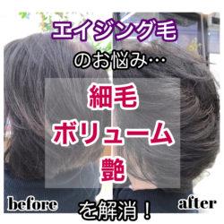 """<span class=""""title"""">エイジング毛のお悩み「細毛・ボリューム・艶」を解消!</span>"""